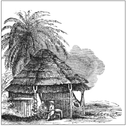 thatch-old
