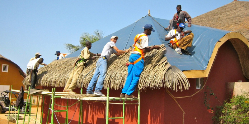 Palmex roofing material
